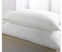 Green Tint Pillow