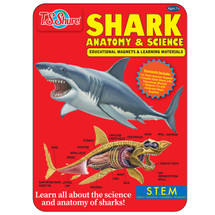 Shark Science & Anatomy Educational Magnets Tin