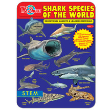 Shark Species of the World Educational Magnets Tin