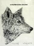 timberwolf-154.jpg