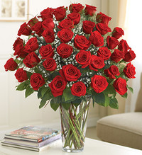 4 Dozen Red Roses Ultimate Elegance Premium Long Stem