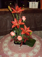 Lily & Rose Hi-Style. Choice of Colors.