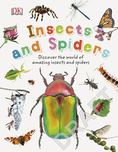 Insects and Spiders: Explore Nature with Fun Facts and Activities