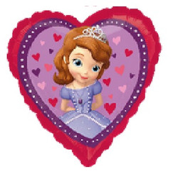 "17"" Sofia the First Love"