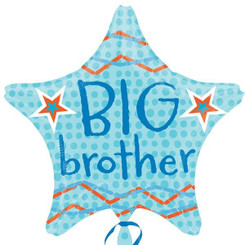 "18"" Big Brother Star"