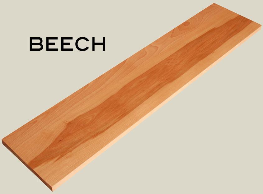 beech.jpg