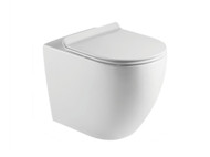 Tregear LT Concealed - S or P Trap - (White Gloss) - Wall Faced - Toilet