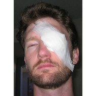 9401 Eye Injuries Safety Training DVD. Shop Now!