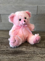 Marshmallow Teddy (Pink and Blue)