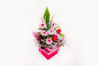 Marvellously medium box arrangement