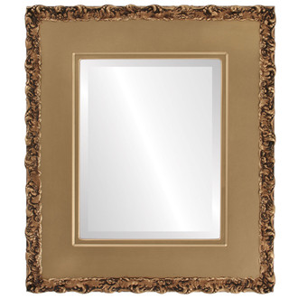 Beveled Mirror - Williamsburg Rectangle Frame - Desert Gold