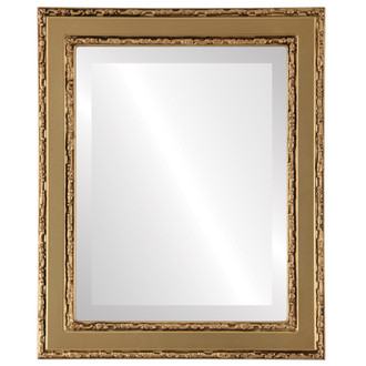 Beveled Mirror - Monticello Rectangle Frame - Gold Spray