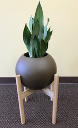 Mid Century Modern Wooden Planter Stands (Pot and Plant Not Included)