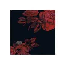 Wild Rag Charmeuse Prints Midnight Rose