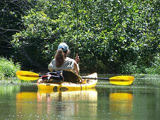 kayak-fishing-at-lake.jpg