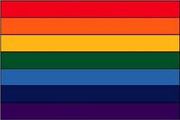 Rainbow (World Co-op) - Indoor Flags
