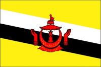 Brunei (UN) - Indoor Flags
