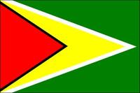 Guyana (UN OAS) - Indoor Flags