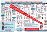 """NEW Mini Contraceptive Option Charts - Pkg of 25 (12"""" x 18"""")"""