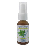Green Tea Hydrating Serum