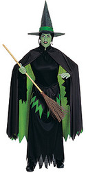 Wicked witch costumes, Adult Wizard of Oz