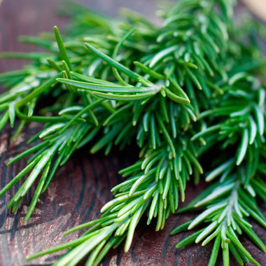 Pure Essential Oil - Rosemary Spanish