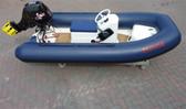 3.1 metre custom tender