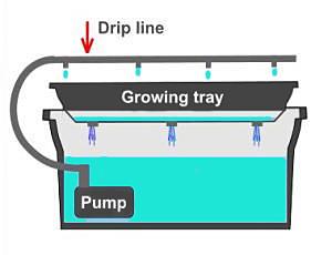 dripsystem1.jpg