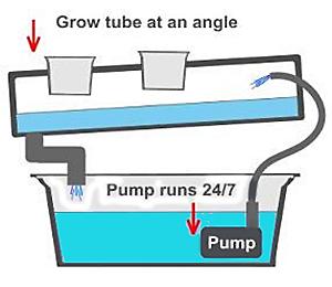 nutrient-film-technique1.jpg