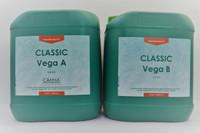 Canna Vega 5L Grow