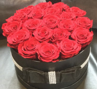 Infinity Red roses