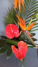 Hot Tropics - Come and join us for our February 2020 workshop. In this class we will be creating a stunning design using the best of the seasons tropical flowers and foliage's in a beautiful container to take home, Make new friends and learn new skills in this popular workshop Available dates - 25th 26th 27th