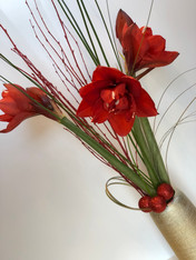 Red Amaryllis Design