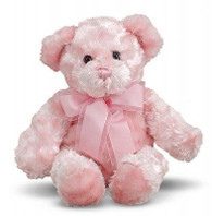 Fluffy Pink Teddy Bear