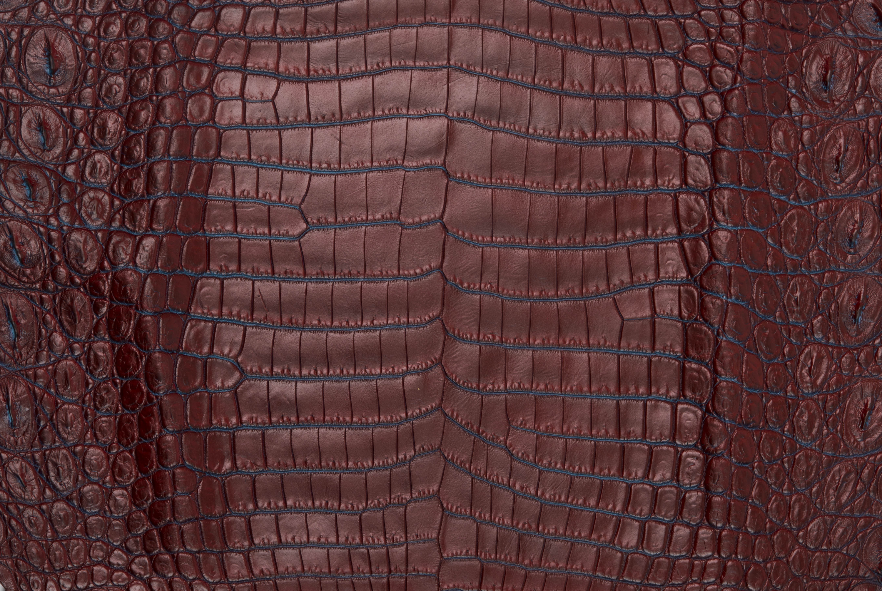 Nile Crocodile Skin