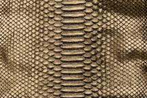 Python Skin Crisp Gold/Black