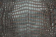 Nile Crocodile Skin Belly Two-Tone Gunmetal/Orange
