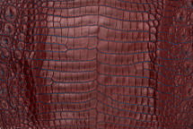 Nile Crocodile Skin Belly Two-Tone Red/Turquoise