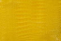 Alligator Skin Belly Glazed Yellow 25/29 cm Grade 4