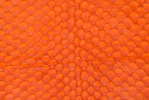 Arapaima Skin Matte Orange