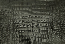 Alligator Skin Belly Glazed Charcoal 25/29 cm Grade 4
