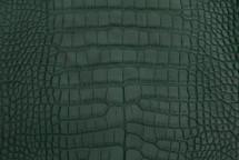 Alligator Skin Belly Matte Forest 23/27 cm Grade 4