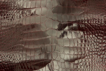 Alligator Skin Belly Glazed Burgundy 50/59 cm Grade 4