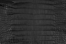Alligator Skin Belly Matte Black 35/39 cm Grade 4