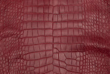 Alligator Skin Belly Matte Cherry 45/49 cm Grade 4
