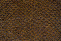 Arapaima Skin Inverted Chestnut