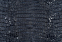 Caiman Skin Belly Matte Navy - XS