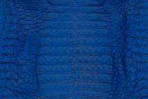 Caiman Skin Belly Matte Cobalt - XS