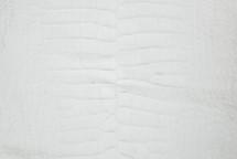 Alligator Skin Belly Crust 40/44 cm Grade 5