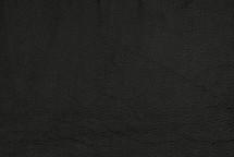 American Bison Skin Black